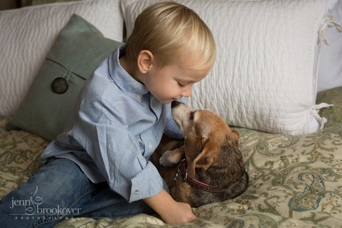 boy and dog on bed smiling during portrait session at home