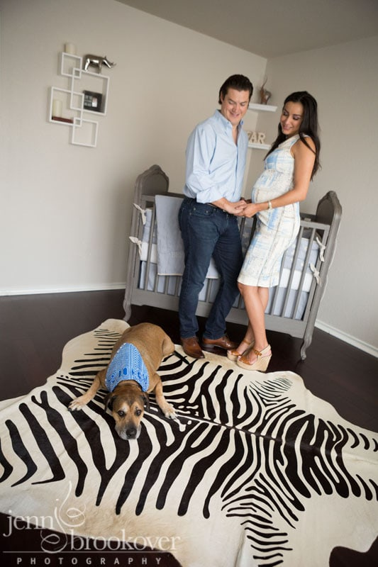 couple looking at dog on zebra rug during maternity photo session at home