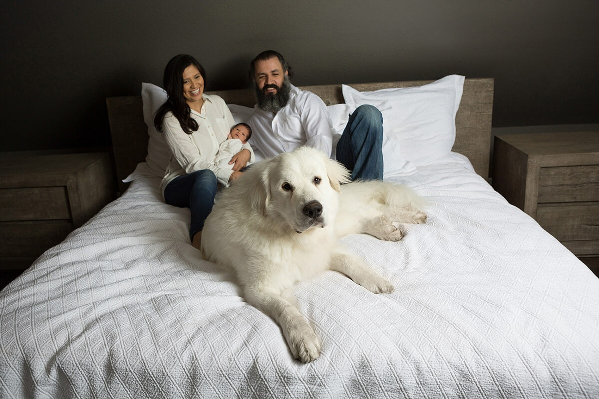 white dog and family newborn session in San Antonio photographed by Jenn Brookover
