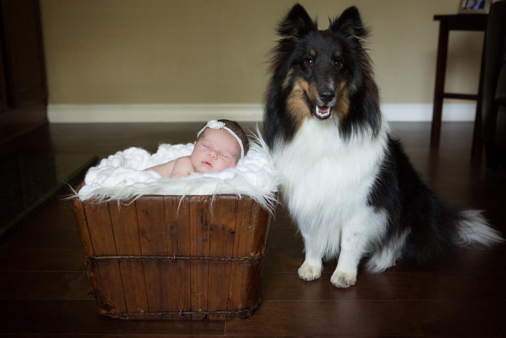 newborn with dog at home in Alamo Heights Texas