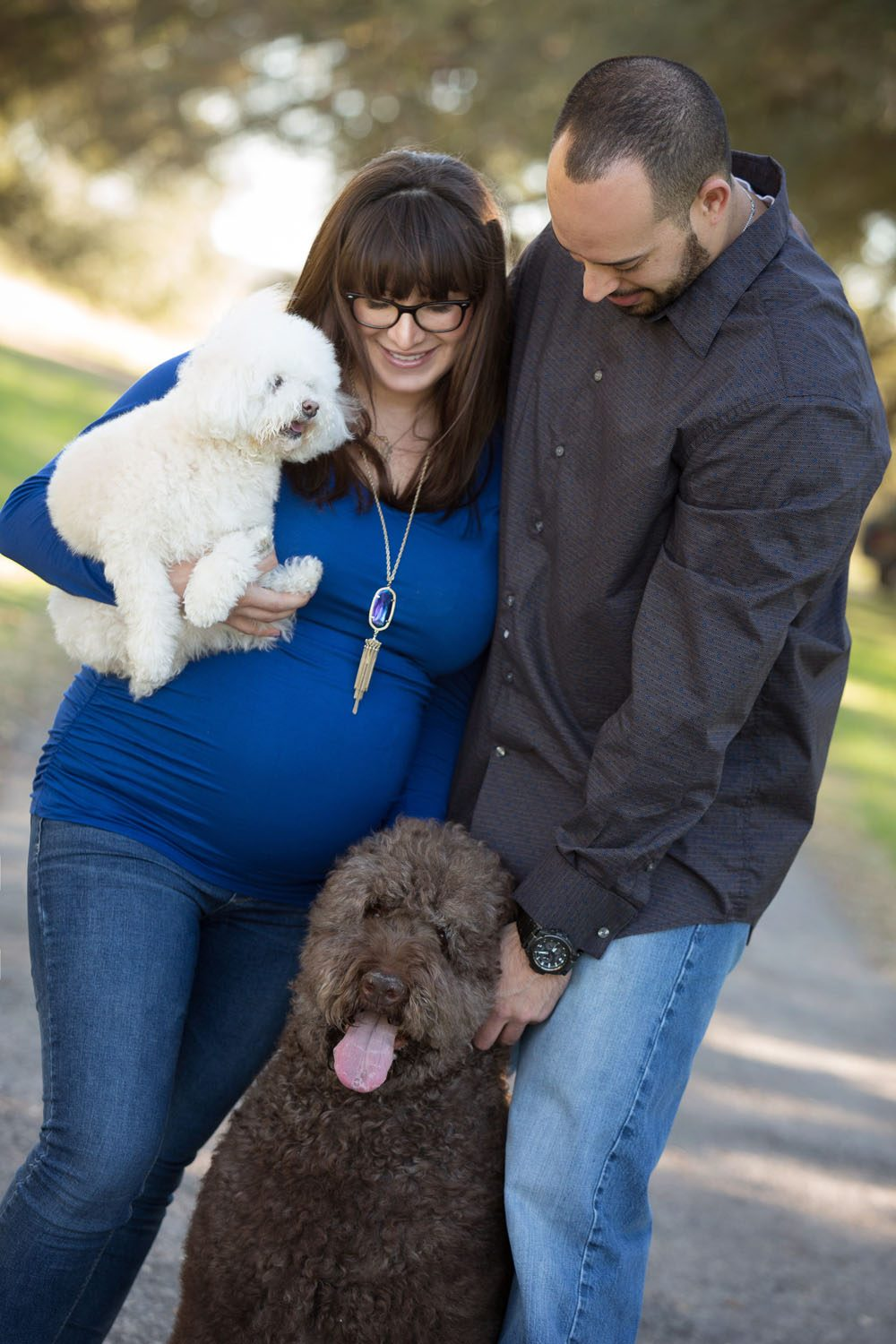 pregnant couple with dogs in royal blue laughing